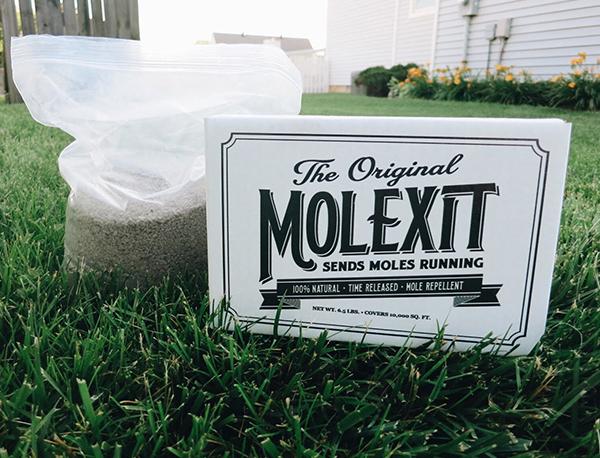 MOLEXIT 6.5 LB
