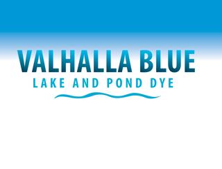 VAHALLA BLUE DYE QT 12/CS