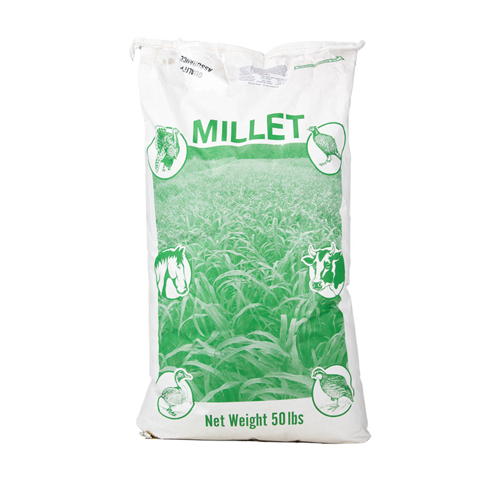 Brown Top Millet Seed  - Caudill Seed Company