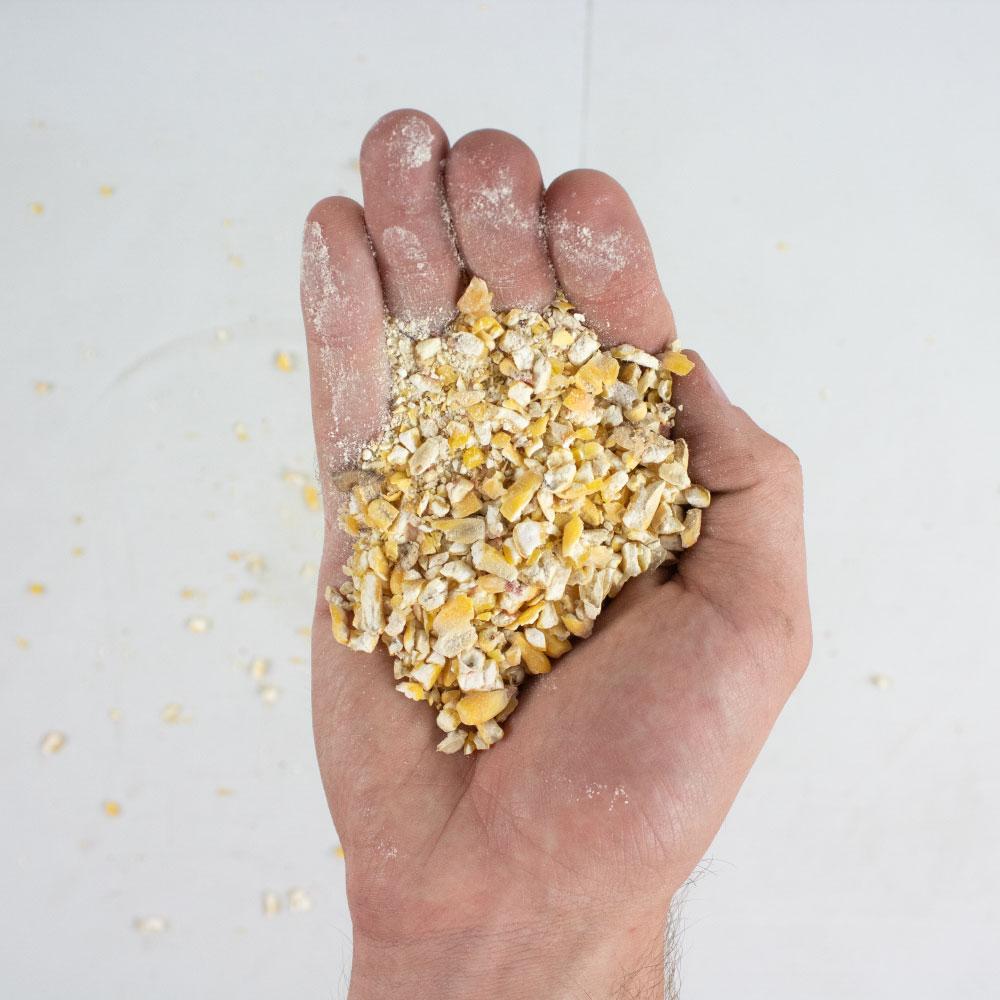 Cracked Corn Wild Bird Food - Bulk - Wholesale  - Caudill Seed Company