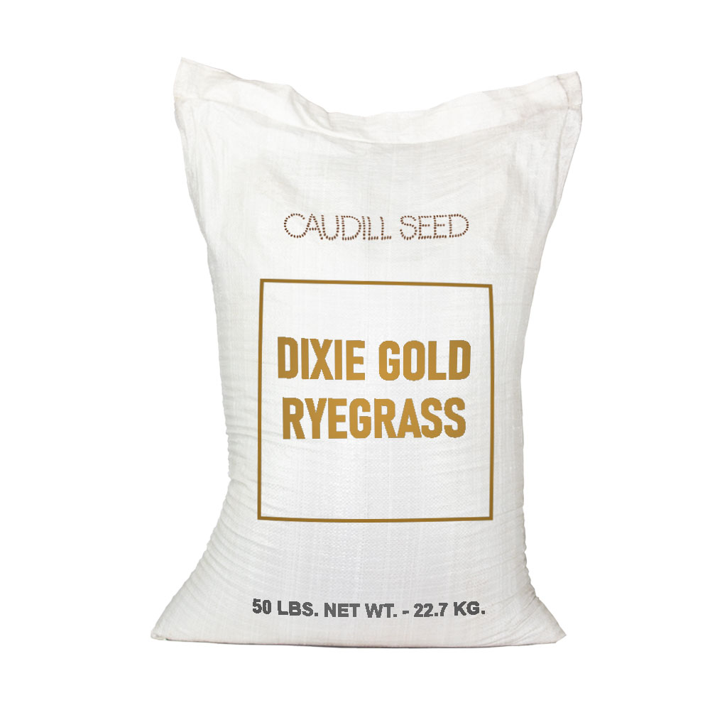 Dixie Gold Annual Ryegrass Seed  - Caudill Seed Company