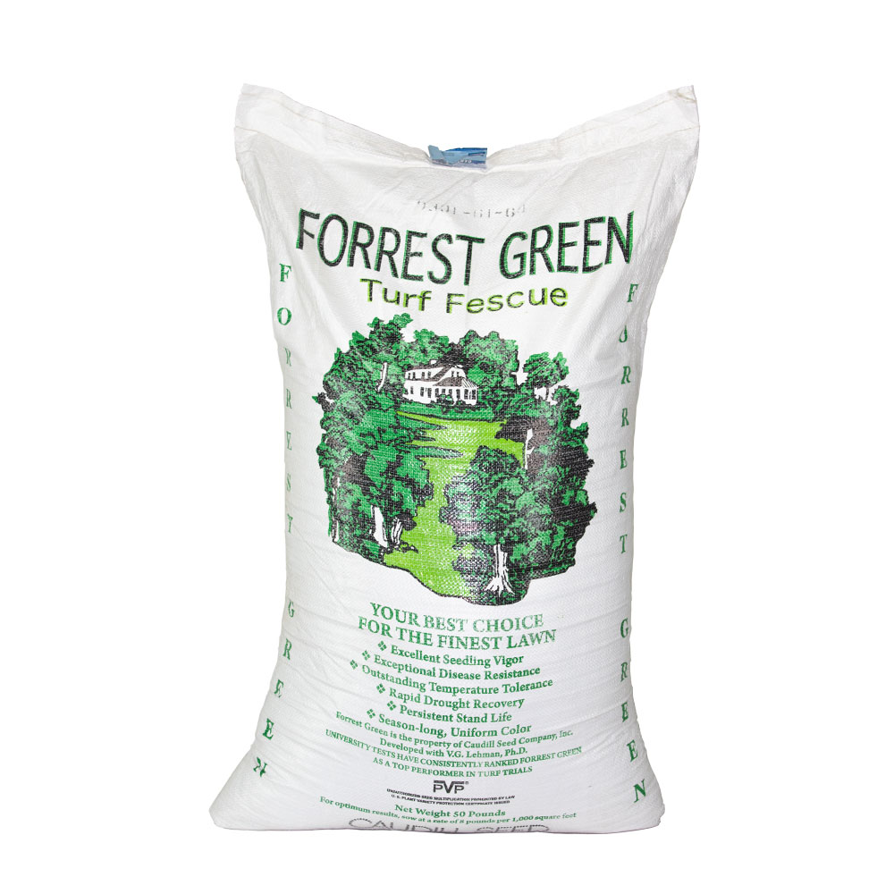 Forrest Green tall Fescue Seed (Certified) - Caudill Seed Company