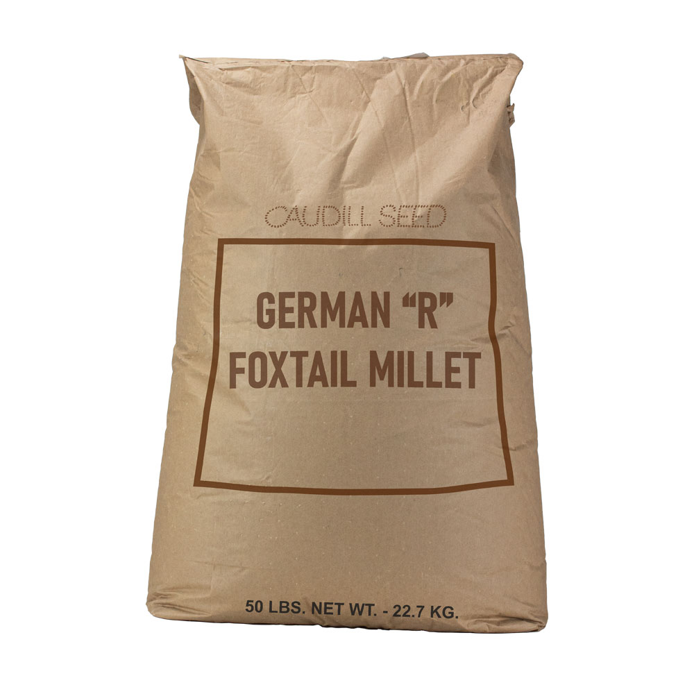 """German """"R"""" Foxtail Millet Seed  - Caudill Seed Company"""