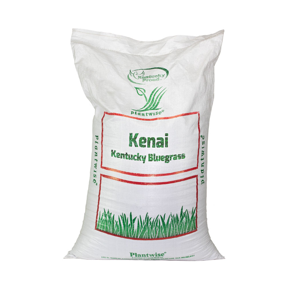 Kenai-Coated-Kentucky-Bluegrass Seed - Caudill Seed Company