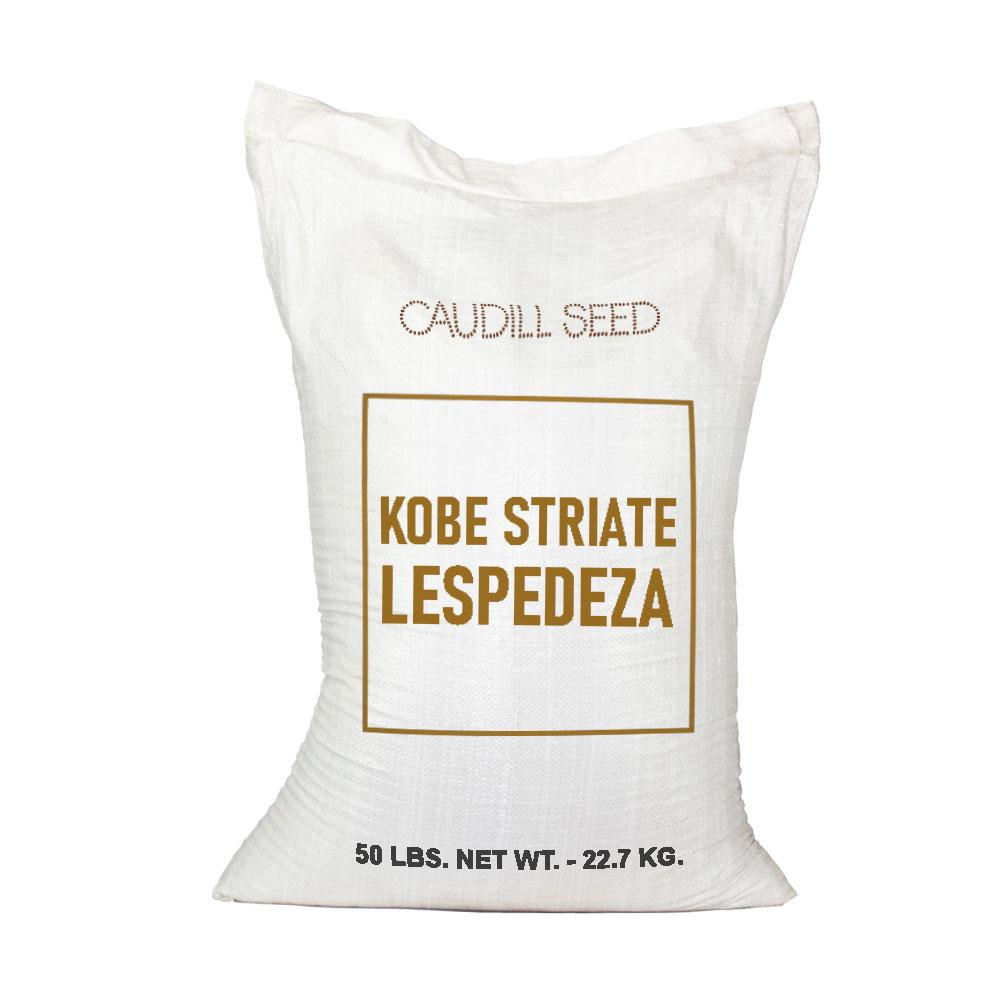Kobe Striate Lespedeza Seed  - Caudill Seed Company