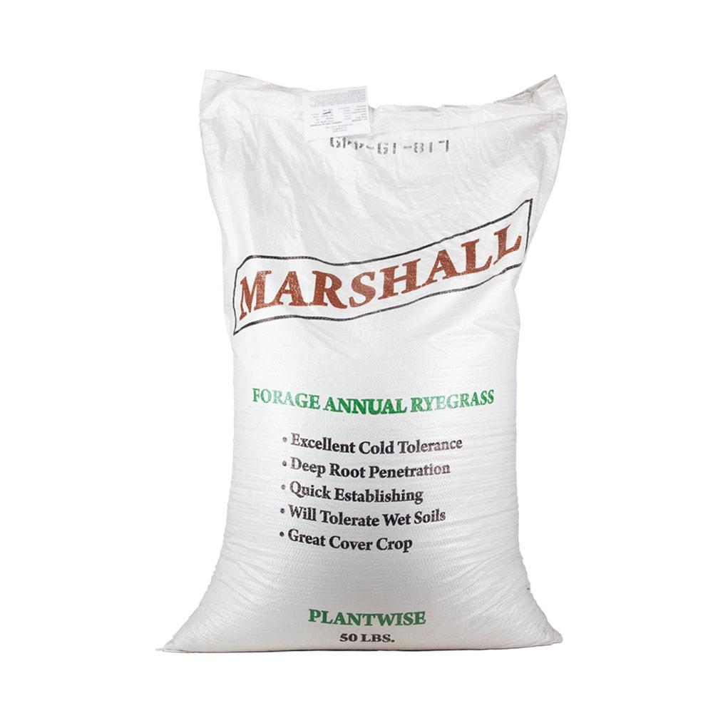 Marshall Annual Ryegrass Seed  - Caudill Seed Company