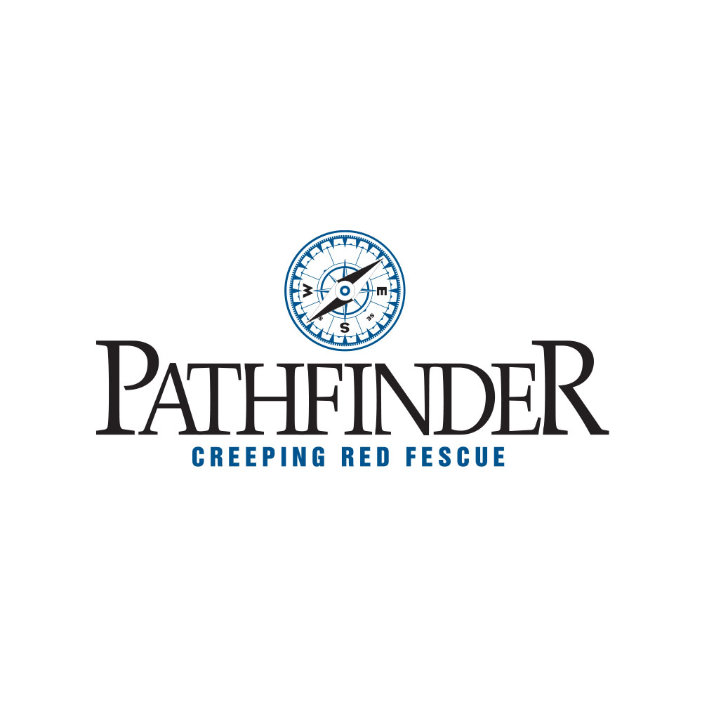 Pathfinder Creeping Red Fescue Seed  - Caudill Seed Company