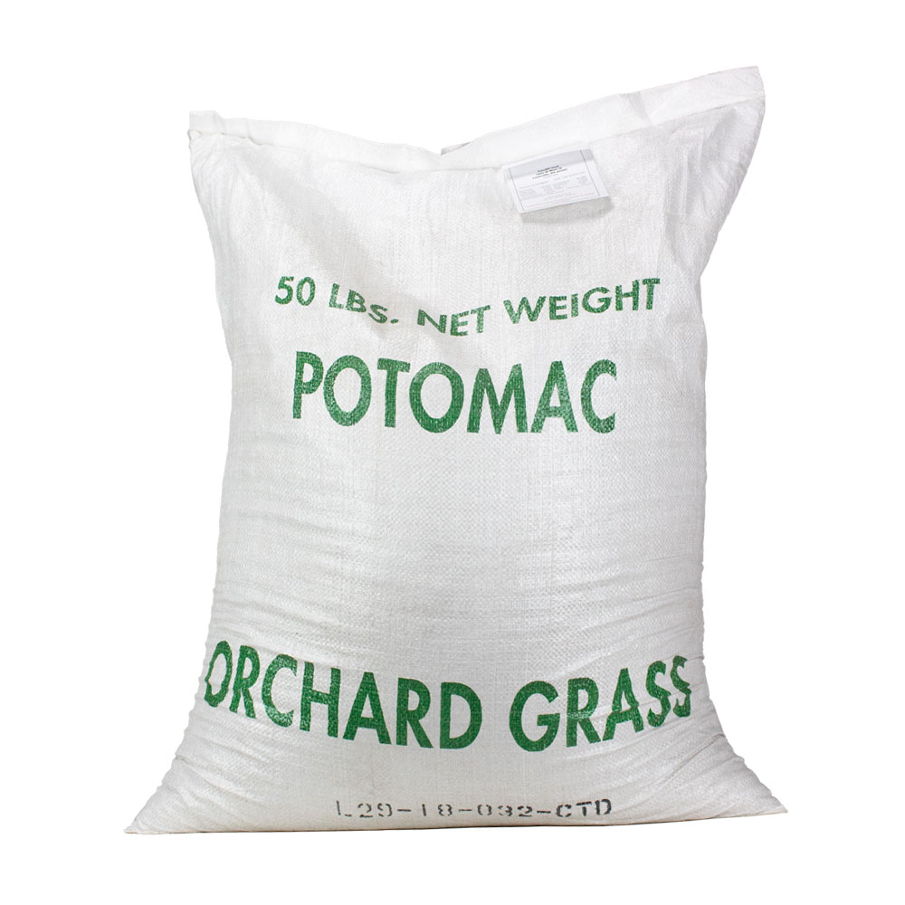 Coated-Potomac-Orchardgrass Seed - Caudill Seed Company