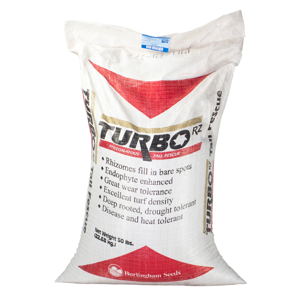 Turbo RZ Tall Fescue Seed