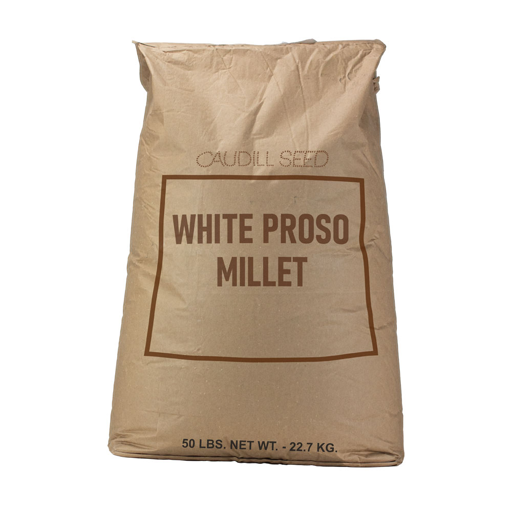 White Proso Millet Seed  - Caudill Seed Company